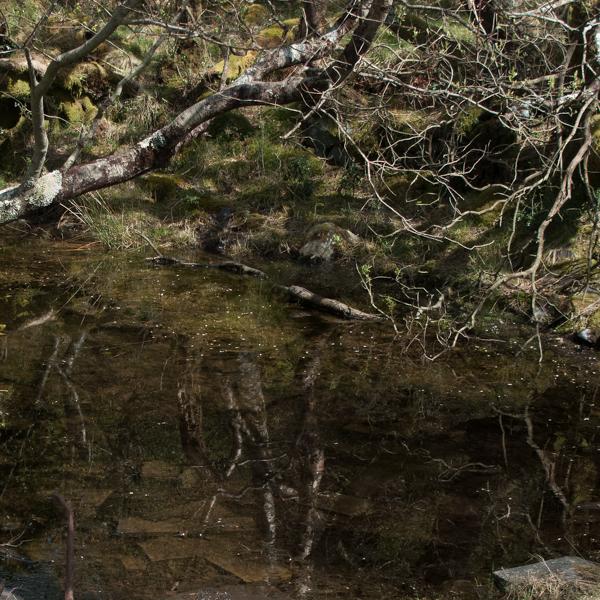 Dinorwic (7 of 7)